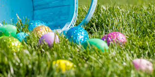 easter hunt eggs pre k easter egg hunt wrong huffpost
