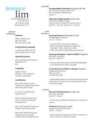 Resume Names Examples Name Of Resume Coinfetti Co