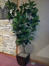 amazing artificial trees for home decor home decor galleries