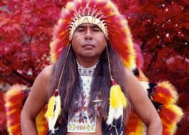 cherokee blood why do so many americans believe they have
