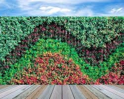 vertical wall garden with flowers stock photo picture and royalty