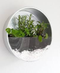 indoor herb garden kits to grow herbs indoors hgtv organic gardening indoor veggie garden indoor vegetables indoor