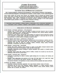 Resume Service Chicago Argumentative Research Papers Marriage Arranged Marriages