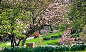 Botanical Garden Cincinnati Our Top Must Do S For In Cincinnati 365 Cincinnati