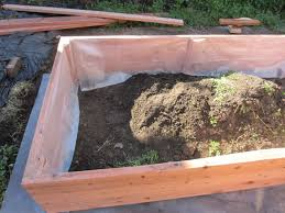 Redwood Planter Boxes by Building A Planter Box And Planting Fruits And Veggies U2013 Shirley