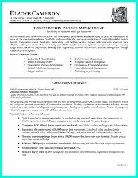 Best 25 Project Manager Resume by Download Project Manager Resume Objective Haadyaooverbayresort Com
