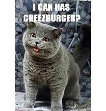 I Can Has Cheezburger Meme - quick byte what is an internet meme osu extension ed tech