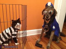Pet Cat Halloween Costume Cat Burglar Dog Officer Halloween Costume Ideas Pets