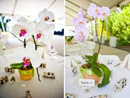 orchid centerpiece wedding reception centerpieces with orchids orchid