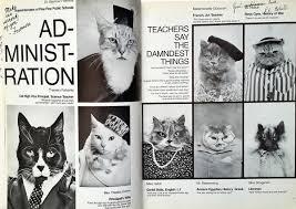 cat high the yearbook cat high the yearbook big ego books