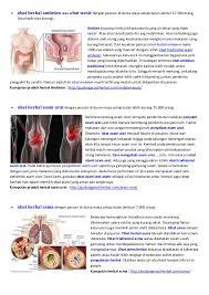 obat herbal primadona indonesia