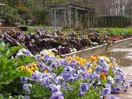 Botanical Gardens In Birmingham Al Birmingham Botanical Gardens