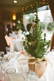 Rustic Center Pieces Picture Of Use Small Pine Trees As Simple Rustic Centerpieces