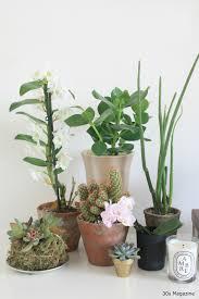 a plant shelfie in the bedroom u2013 30s magazine