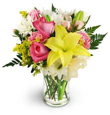 free flower delivery flowers 20 dollars free delivery dentonjazz