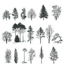 collection of 25 tree