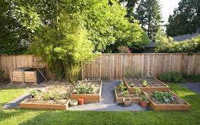 Garden Ideas For Dogs Excellent Backyard Ideas For Dogs Contemporary Landscaping Ideas