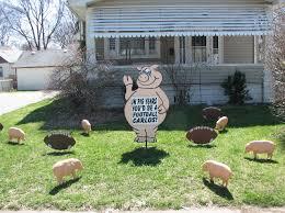 yard card pig hog lawn greetings yard card display