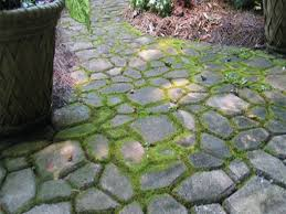 Concrete Driveway Paver Molds by Pin By Melinda Berry On Landscape Ideas Pinterest