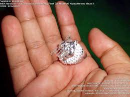 ring cincin alpaka 戒指 حلقة jièzhǐ ring ikat emban cincin akik aloy alpaka perak