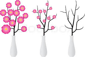 Clipart Vase Of Flowers Dry Branch Of Tree Or With Flowers In Elegant White Vase