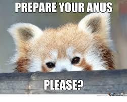 Prepare Your Anus Memes - 25 best memes about prepare your anus prepare your anus memes
