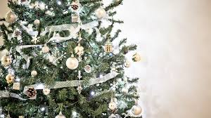 want a real christmas tree start looking now wbns 10tv columbus
