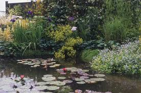 Decorative Pond 10 Best Garden Pond Building Practices