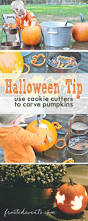 Martha Stewart Halloween Crafts For Kids Best 25 Easy Pumpkin Carving Ideas On Pinterest Pumpkin Carving
