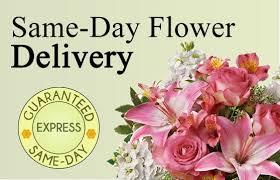flowers express flower delivery express brief overview of this service