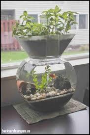 home aquaponics garden unique aquaponics systems for indoor