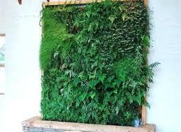 indoor wall herb garden ideas indoor wall garden with grow lights