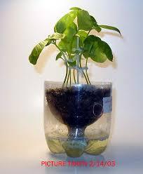 topper u0027s place pop bottle pots recycled bottles make self