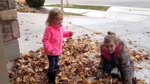 Chloe Little Girl Meme - lily and chloe enjoying the fall leaves youtube