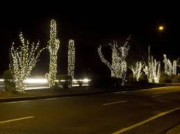christmas in tucson arizona rhapsody in books weblog