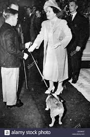 photograph of the queen mother 1900 2002 receiving a corgi dated