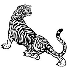angry tiger black white royalty free vector image