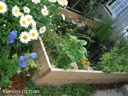 the 25 best small water gardens ideas on pinterest garden