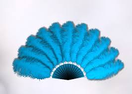 feather fans second marketplace light blue animated ostrich feather fan