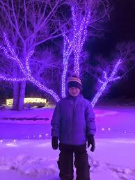 hudson gardens christmas lights sweet home colorado hudson gardens christmas lights