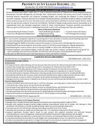 Finance Executive Resume Resume Writing Service Sydney