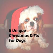 unique christmas gifts for dogs small jpg
