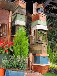 the northwest flower and garden show seattle