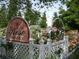 a visit to the centennial rose garden gardening tales