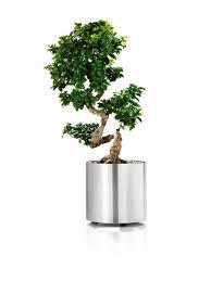 33 best lechuza planters images on pinterest modern planters