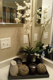 ideas for guest bathroom bathroom wonderful halforating pictures ideas for guestororate my