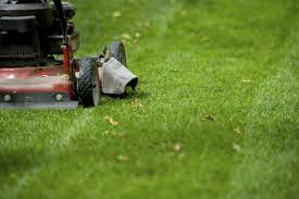 lawn care u0026 pest control in florida your green team