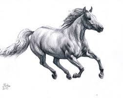 pictures sketch of horse running drawing art gallery
