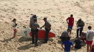cape cod beach closed after shark scare necn