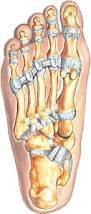 Foot Ligament Anatomy Footeducation
